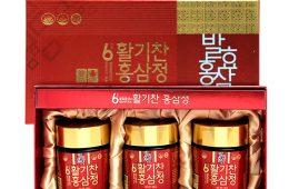 6년근 발효홍삼 활기찬 홍삼정