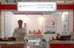 2013 고려인삼 세계투어 베트남전 참가