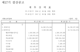 [공고] 제17기 결산공고